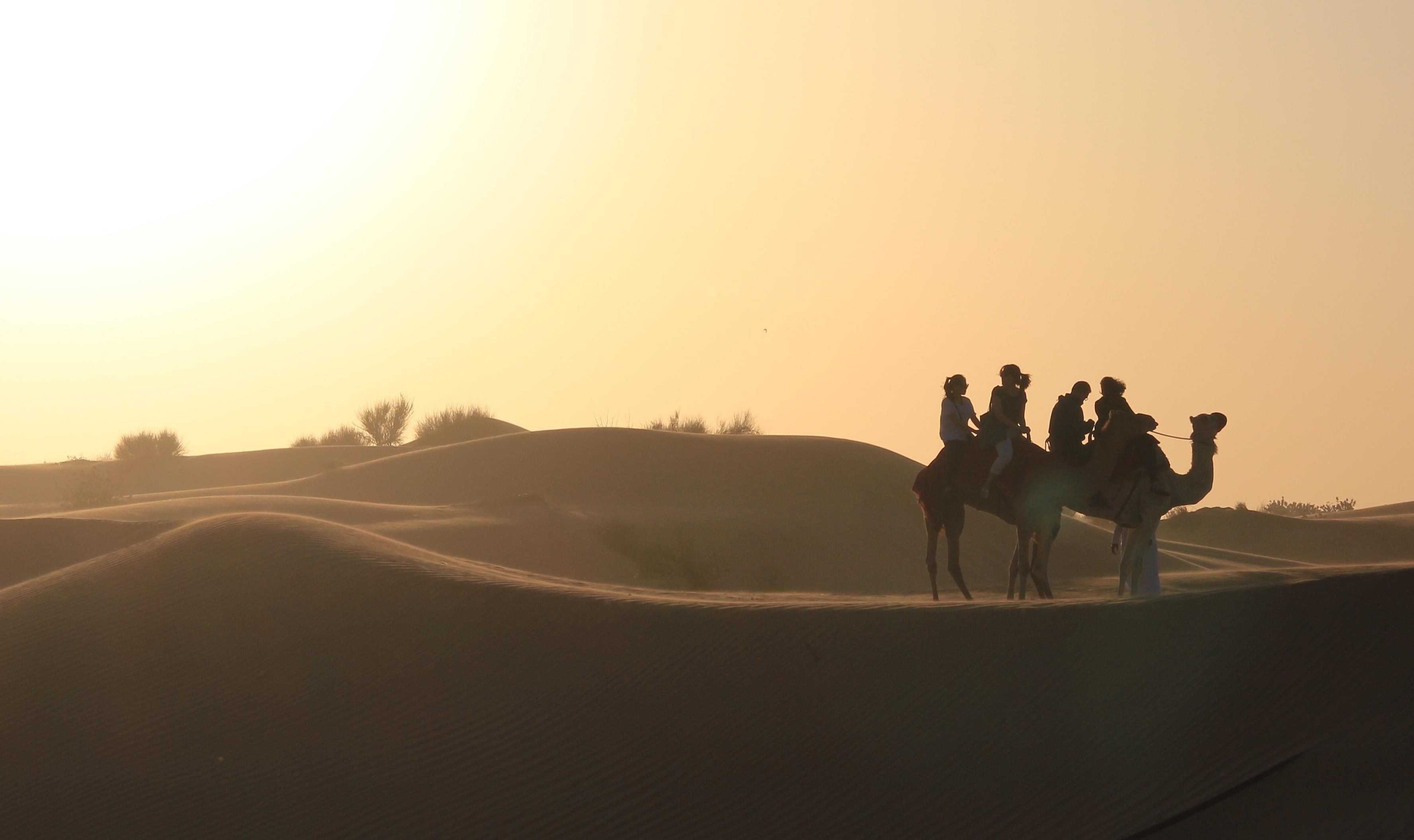 Desert Safari- Dubai